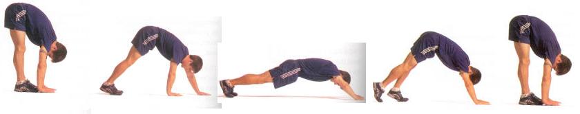 movement-prep-hand-walk-1