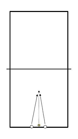 volleybal Pak de bal