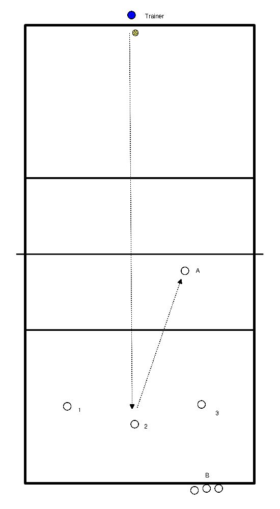 volleybal Kern 2 - Servicepass