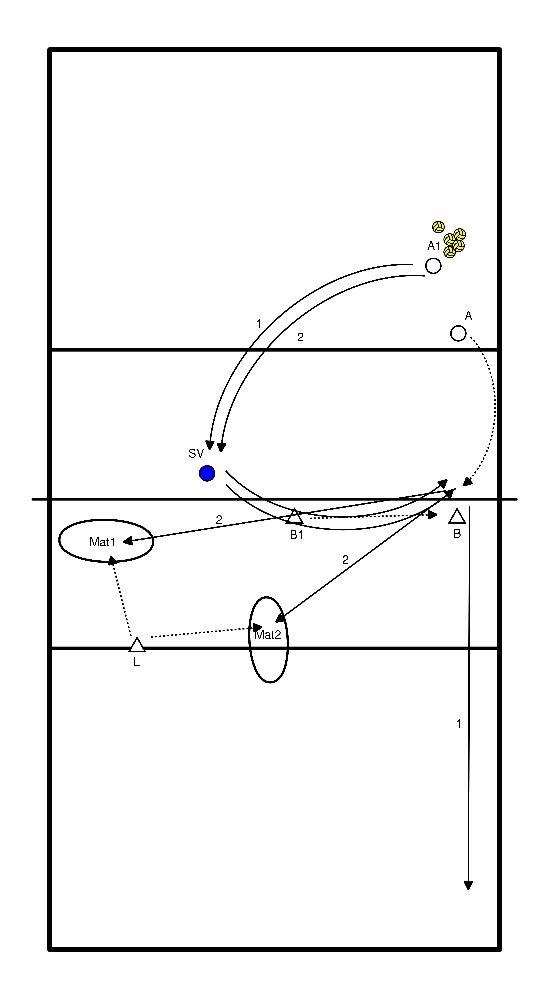 volleybal Spelinzicht