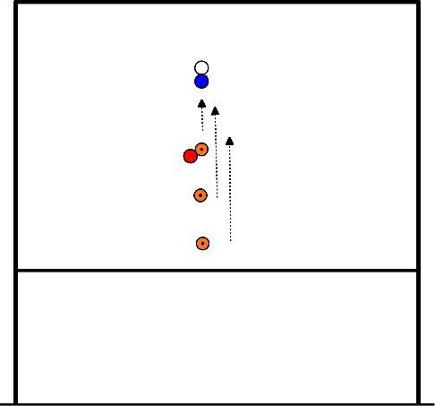 korfbal 3 pionnen voor de korf (vaste aangever)