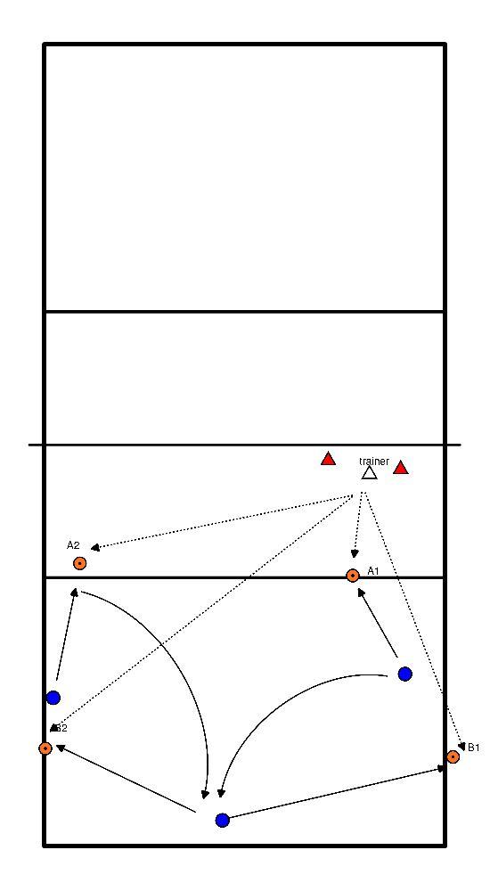 volleybal  achter de bal aan (lang/kort)